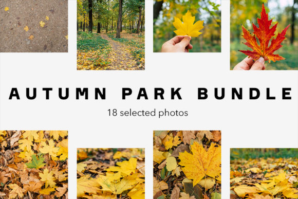 Print on Demand: Autumn Park Bundle, 18 Photos Graphic Nature By frostroomhead
