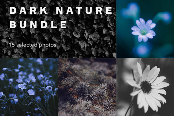 Print on Demand: Dark Nature Bundle Graphic Nature By frostroomhead