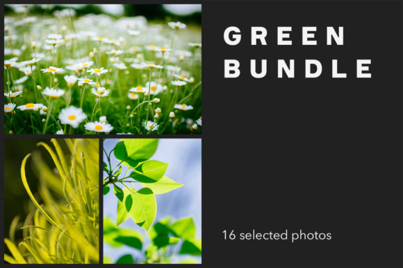 Print on Demand: Green Bundle, 16 Photos Graphic Nature By frostroomhead