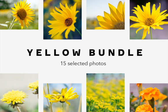 Print on Demand: Yellow Bundle, 15 Photos Graphic Nature By frostroomhead