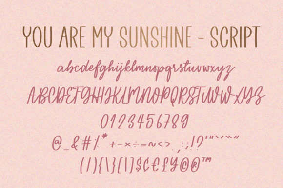 Print on Demand: You Are My Sunshine Script & Handwritten Font By BitongType - Image 10