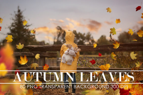 Print on Demand: Autumn Leaves Overlays, Falling Leaves Graphic Actions & Presets By The Rose Mind