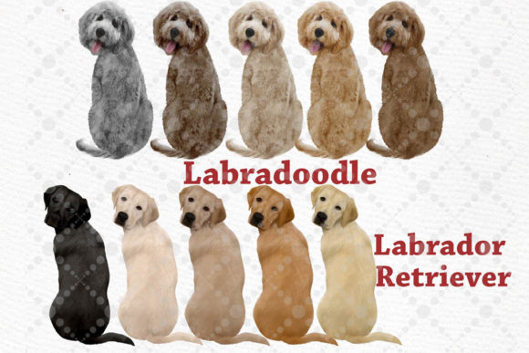 People with Dogs,dogs Clipart,Dog Breeds Graphic Illustrations By LeCoqDesign - Image 4