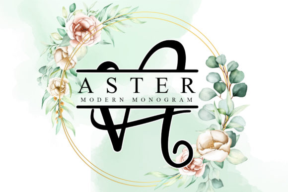 Print on Demand: Aster Decorative Font By thomasaradea