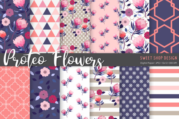 Digital Paper Protea Flowers Graphic Patterns By Sweet Shop Design
