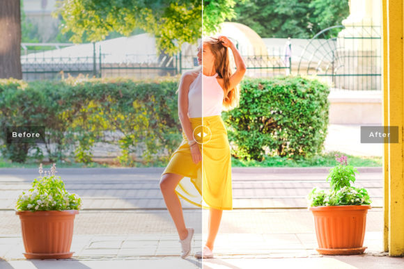 Print on Demand: Mustard Pro Lightroom Presets Graphic Actions & Presets By Creative Tacos