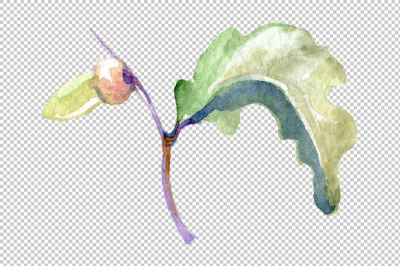 Print on Demand: Acorn Watercolor Graphic Illustrations By MyStocks - Image 8
