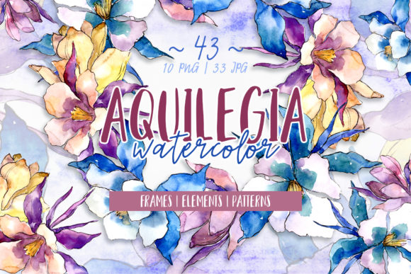 Print on Demand: Beautiful Aquilegia PNG Watercolor Set Grafik Illustrationen von MyStocks