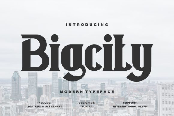Print on Demand: Bigcity Display Font By Vunira