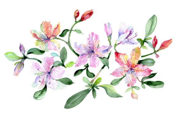 Print on Demand: Bouquet Breath of Love Watercolor Graphic Illustrations By MyStocks