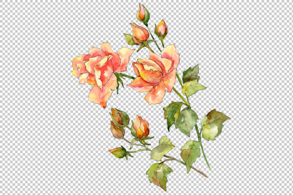 Print on Demand: Bouquet of Wonderful Roses PNG Watercolor Set Gráfico Ilustraciones Por MyStocks