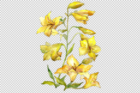 Print on Demand: Bouquet of Yellow Lilies Watercolor Flower Set Graphic Illustrations By MyStocks