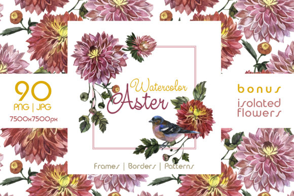 Print on Demand: Charming Asters Watercolor Set Graphic Illustrations By MyStocks