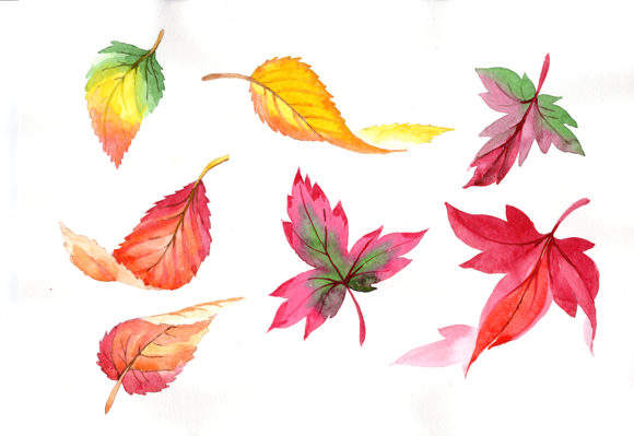 Print on Demand: Colorful Autumn Leaves Watercolor Set Graphic Illustrations By MyStocks