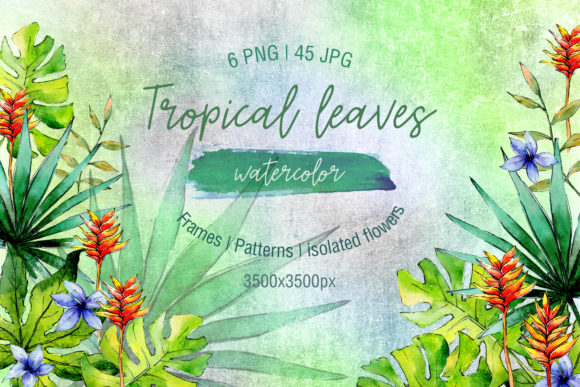 Print on Demand: Green Tropical Leaves PNG Watercolor Set Graphic Illustrations By MyStocks