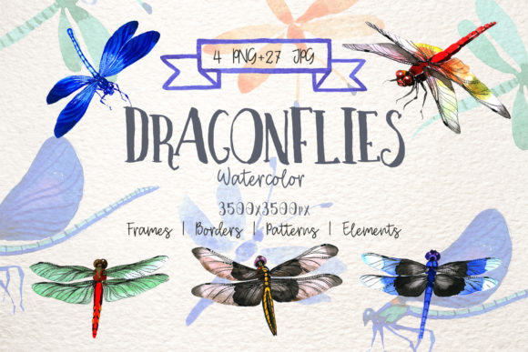 Print on Demand: Insect Dragonfly PNG Watercolor Set Graphic Illustrations By MyStocks