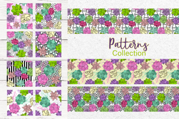 Print on Demand: Succulents Vector Set Graphic Illustrations By MyStocks - Image 3