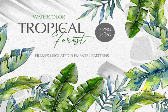 Print on Demand: Tropical Forest Watercolor PNG Graphic Illustrations By MyStocks
