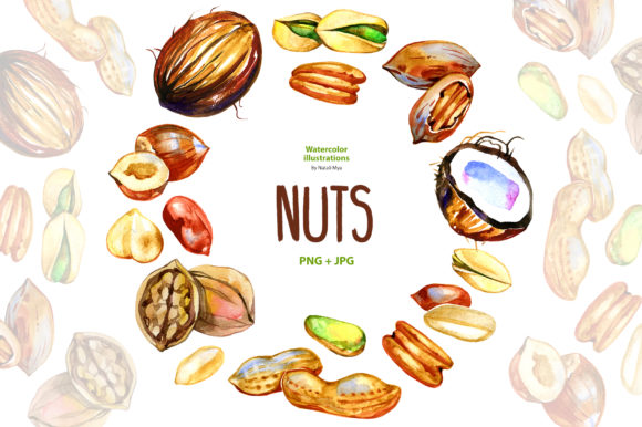 Watercolor Nuts Graphic Illustrations By NataliMyaStore