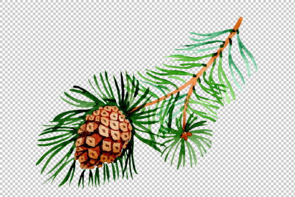 Print on Demand: Branches of Spruce and Pine Watercolor Set Graphic Illustrations By MyStocks