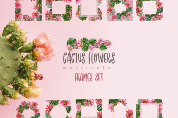 Print on Demand: Cactus Flowers Watercolor Set Graphic Illustrations By MyStocks - Image 4