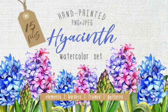 Print on Demand: Colorful Hyacinth PNG Watercolor Set Graphic Illustrations By MyStocks