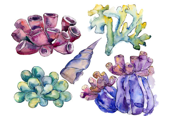 Print on Demand: Sea Flowers, Corals Magic Watercolor Graphic Illustrations By MyStocks - Image 1