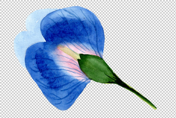 Print on Demand: Sweet Pea Blue Watercolor Graphic Illustrations By MyStocks - Image 2