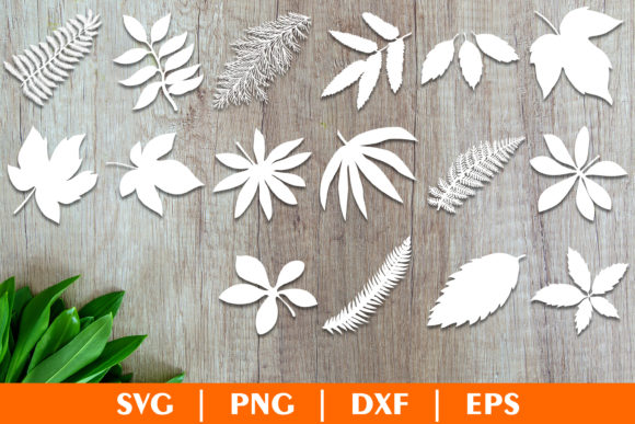 Tropical Leaves, Leaves Template Graphic Crafts By julimur2020