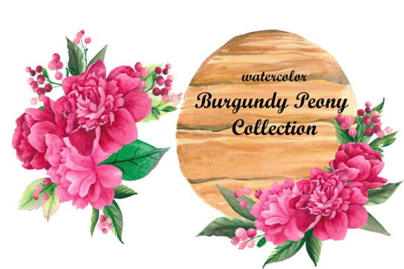 Print on Demand: Watercolor Burgundy Peony Flower Clipart Graphic Objects By colours_of_wind
