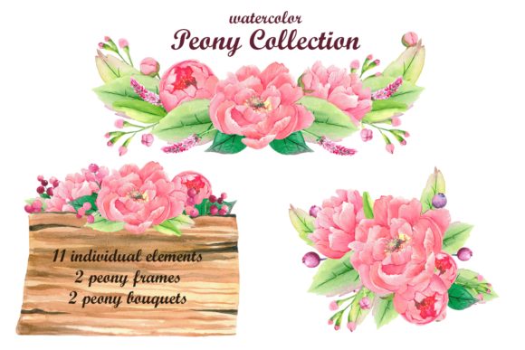 Print on Demand: Watercolor Pink Peony Clipart Graphic Objects By colours_of_wind
