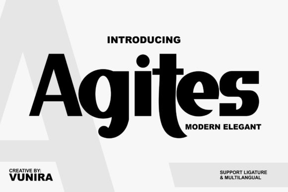 Print on Demand: Agites Display Font By Vunira
