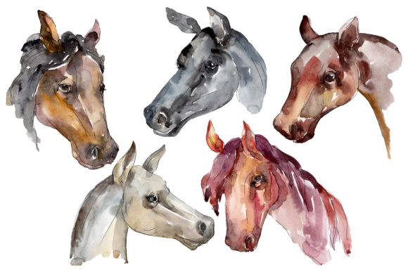 Print on Demand: Farm Animals Horse Head Watercolor Graphic Illustrations By MyStocks