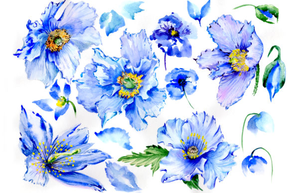 Print on Demand: Gently Blue Poppies Watercolor Set Graphic Illustrations By MyStocks