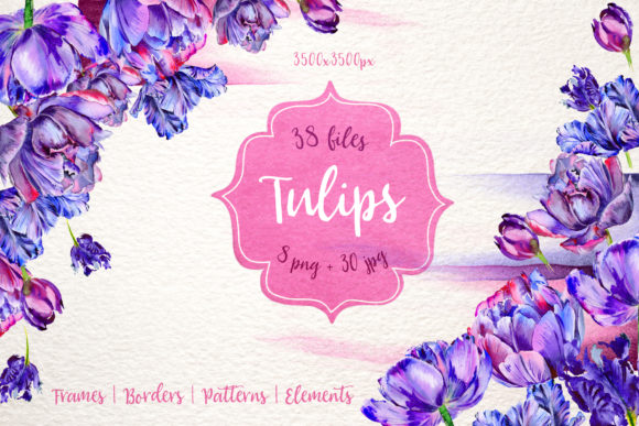 Print on Demand: Lovely Purple Tulip Watercolor Set Graphic Illustrations By MyStocks