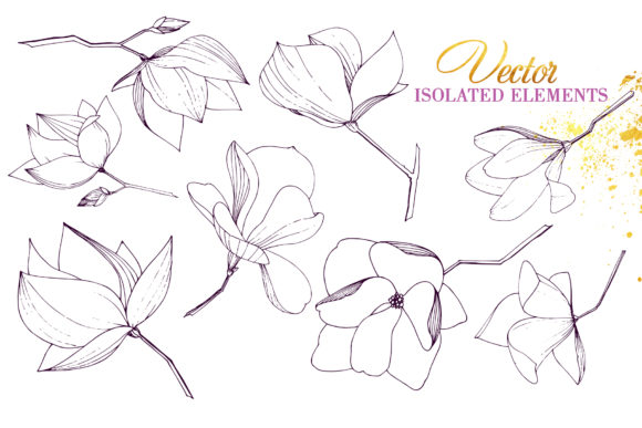 Print on Demand: Magnolia Vector Set Graphic Illustrations By MyStocks - Image 9