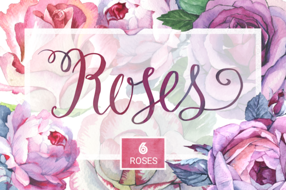 Print on Demand: Romantic Set of 6 Watercolor Roses Graphic Illustrations By MyStocks