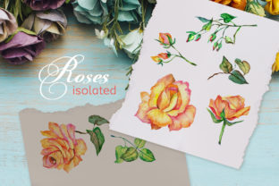 Print on Demand: Roses Watercolor Yellow Graphic Illustrations By MyStocks 2