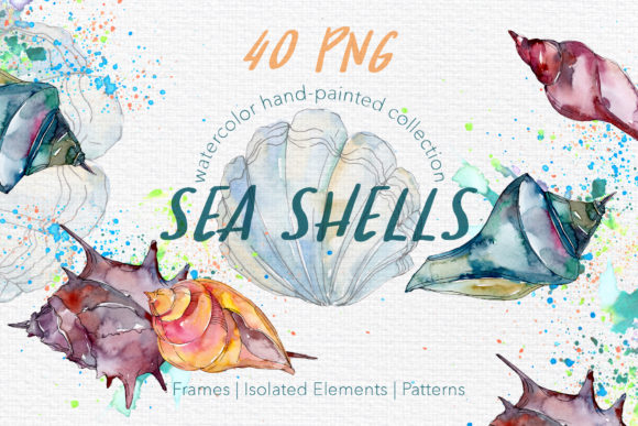 Print on Demand: Sea Shells Watercolor Graphic Illustrations By MyStocks