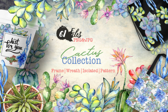 Print on Demand: Succulents Cactus Watercolor Graphic Illustrations By MyStocks