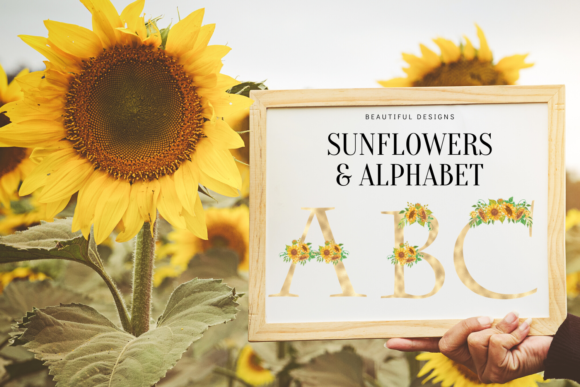 Sunflowers Floral Printable Alphabet, Graphic Illustrations By Aneta Design