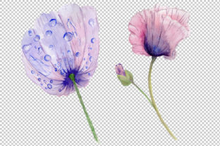 Print on Demand: Sweet Flowers Colorful Poppy Watercolor Set Graphic Illustrations By MyStocks 6