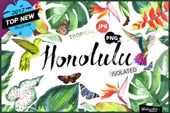 Print on Demand: Tropical Clipart Watercolor Graphic Illustrations By MyStocks