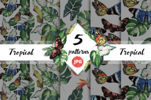 Print on Demand: Tropical Clipart Watercolor Graphic Illustrations By MyStocks 2