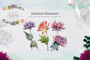 Print on Demand: Watercolor Asters Design Set Graphic Illustrations By MyStocks 2
