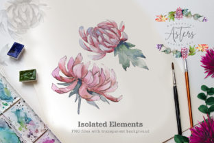 Print on Demand: Watercolor Asters Design Set Graphic Illustrations By MyStocks 3