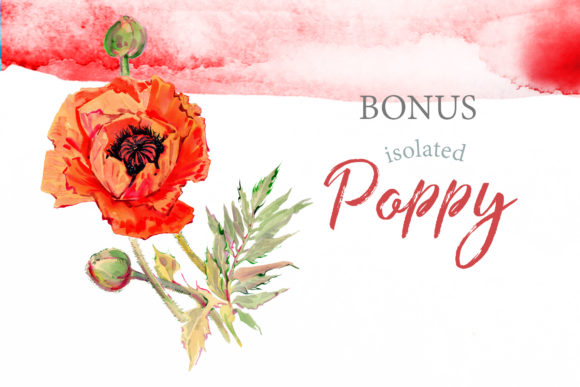 Print on Demand: Watercolor Red Poppy Set Graphic Illustrations By MyStocks - Image 8