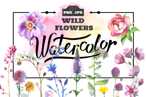 Print on Demand: Wild Flowers Watercolor Set Graphic Illustrations By MyStocks