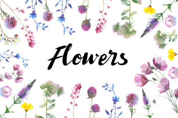 Wild Flowers Watercolor Set Graphic Preview