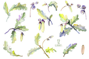 Print on Demand: Acorn Watercolor Graphic Illustrations By MyStocks 2